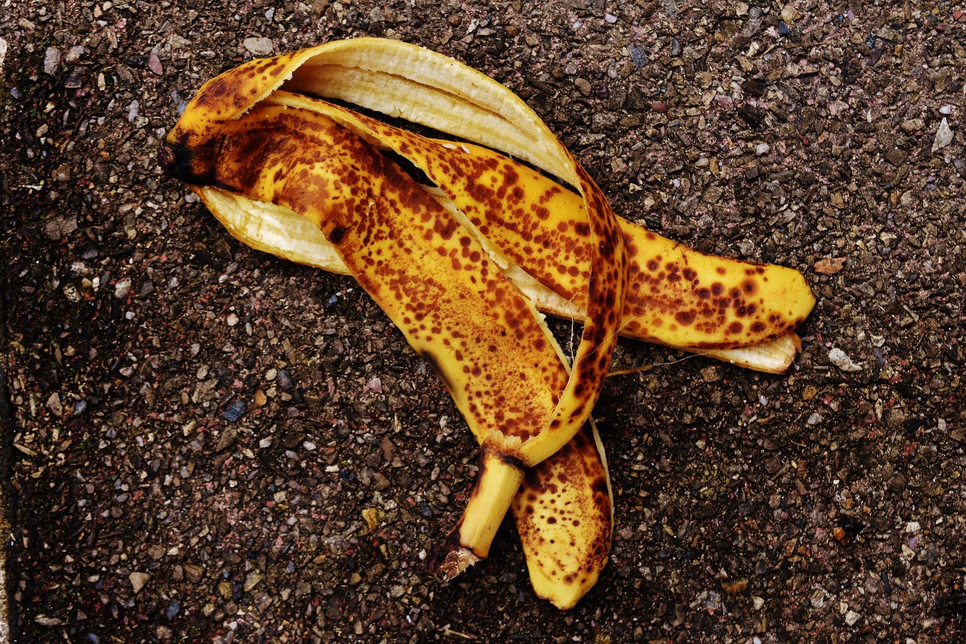 skórka od banana