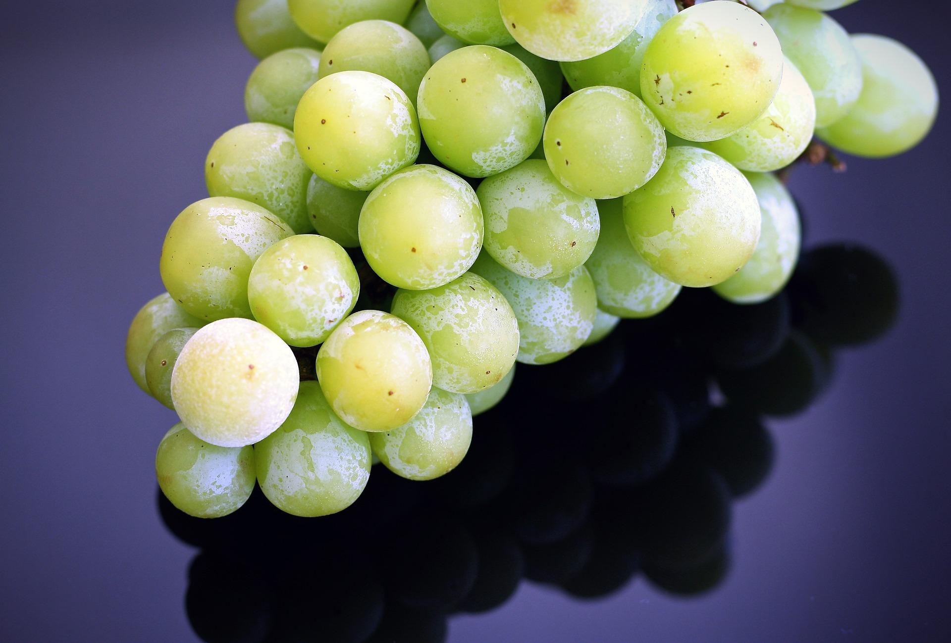 grapes-1476089_1920