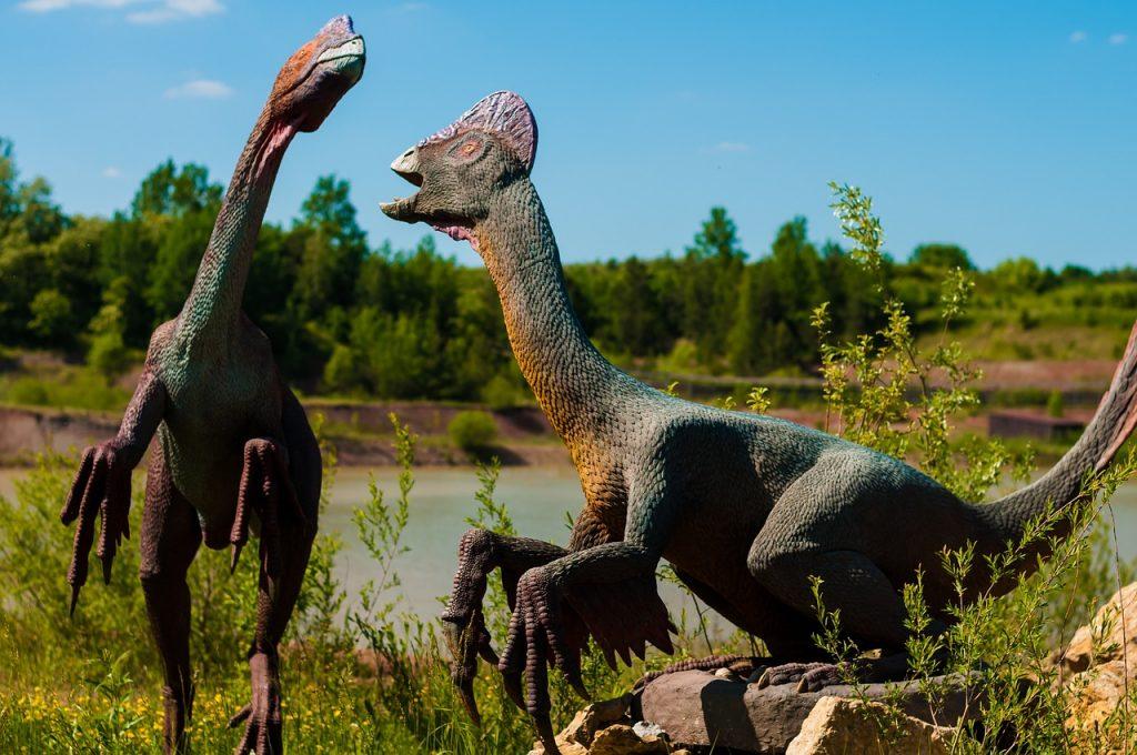 park dinozaurów w krasiejowie 3